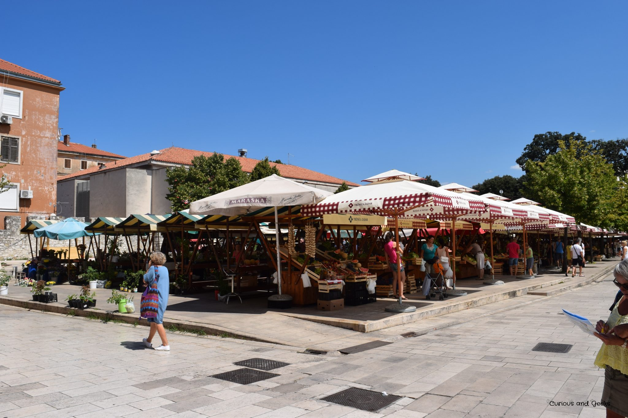 zadar s market - Road trip in Croatia with kids