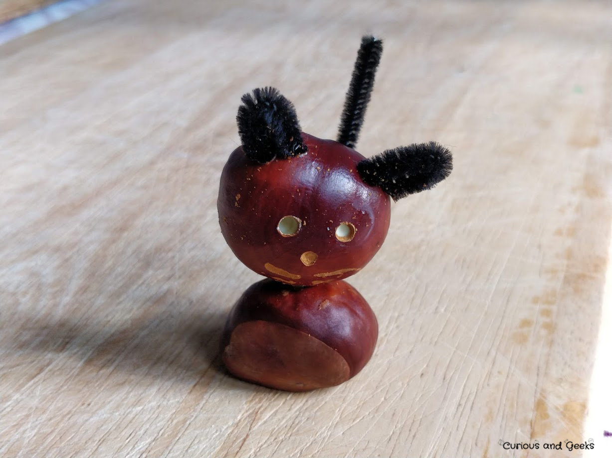 A cat or a mouse - 10 DIY conkers animals: Autumn crafts for kids