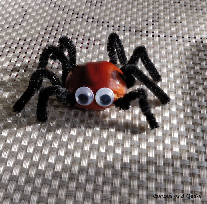 Fall craft for kids and adults - the spider