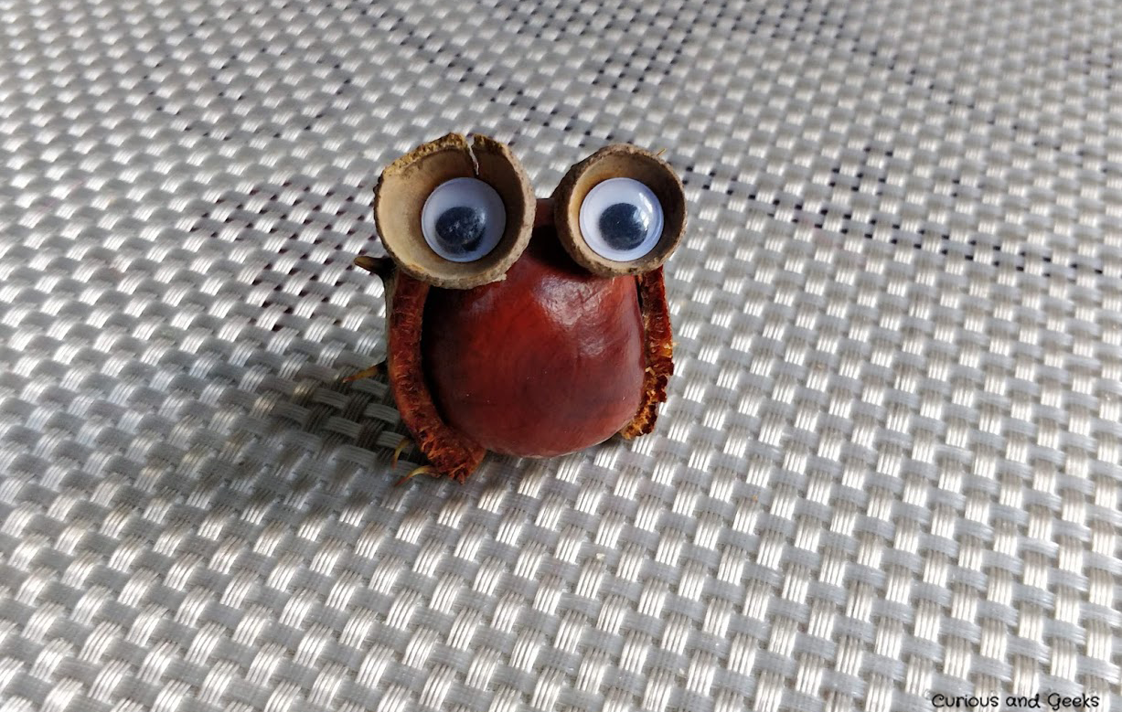 Fall crafts for kids and adults: The owl, a chestnut animal