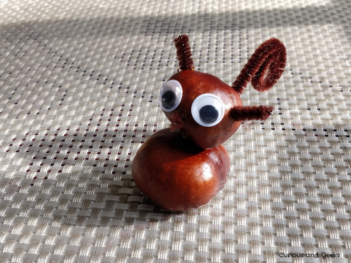 A squirrel - autumn craft for kids and adults