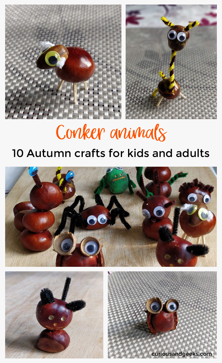 10 Diy Conkers Animals Autumn Crafts For Kids Curious And Geeks