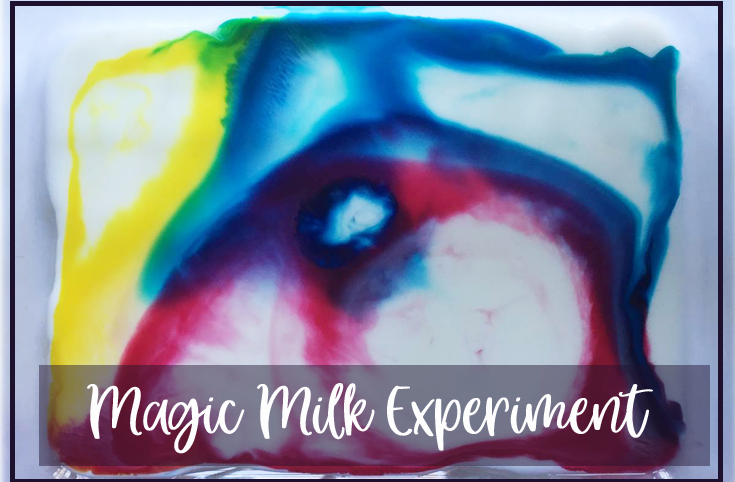 Magic Milk Experiment for kids