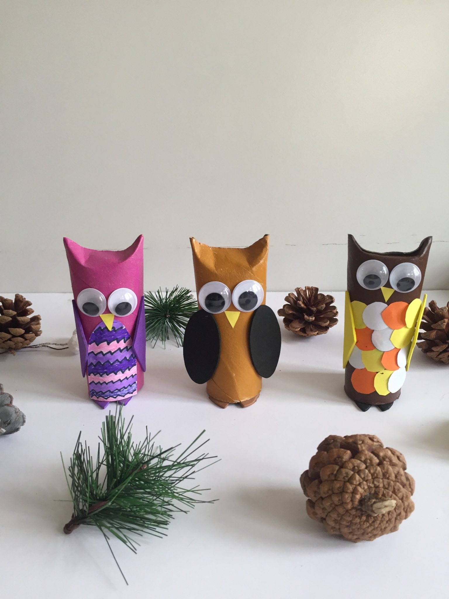 Toilet Paper roll owls model - Toilet paper roll owls - an Owlsome craft for kids