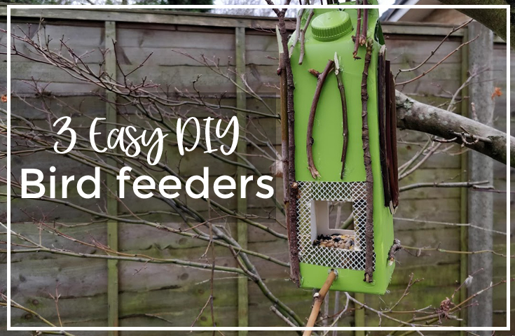 Three easy DIY bird feeders made out of recycled materials
